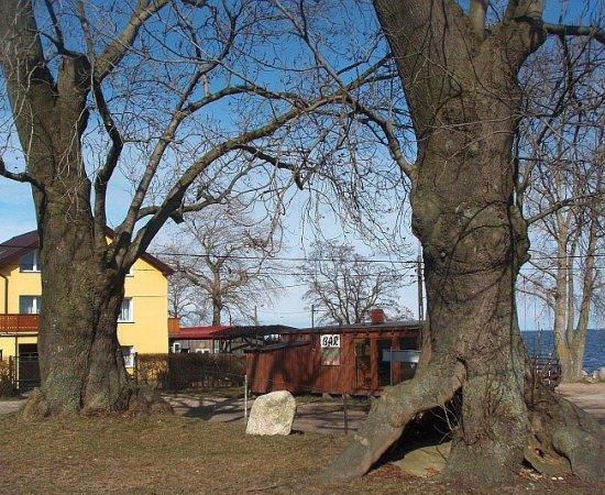 Mechelinki : stanowiska przyrodnicze