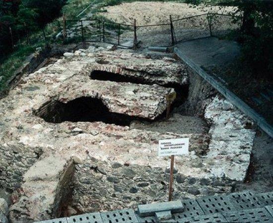 Stanowisko archeologiczne Puckiego Krzyżackiego Zamku